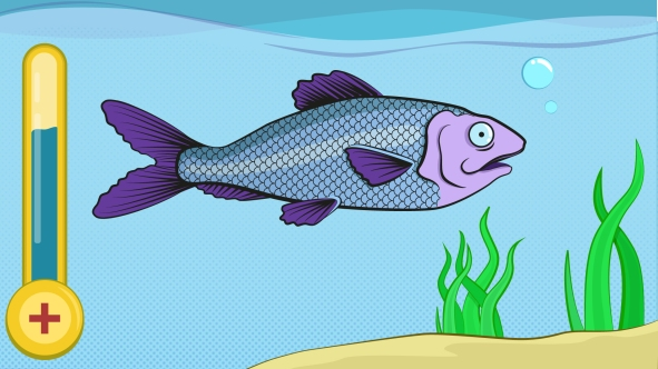 Our_fish_Game_concepts